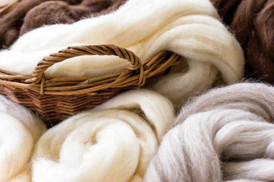 Peruvian_Royal_alpaca_wool_fibre_v5
