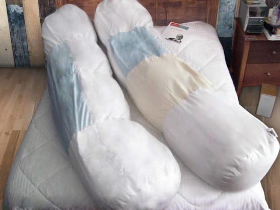 Royal Alpaca_Body_Pillows_Peruvian PIMA Cotton_600tc_v1_sdd